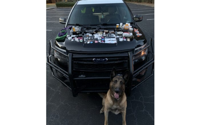 Canine officer Atos with the drug haul spread on a Marietta police car