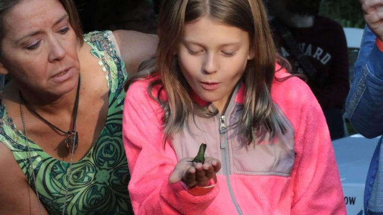 Child holds hummingbird