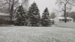 snow this morning in Albany NY